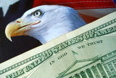 Un billet d'un dollar sur le drapeau d'american eagle — Photo