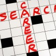 Write the words Career Search on a crossword puzzle — Stock Photo