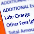 ������, ������: Focus on the Late Charge item in a mortgage payment coupon