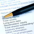 Analyze financial statement of company — Stock Photo #3499588
