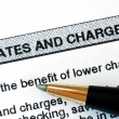 Check out the rates and charges from a bank statement — Stock Photo
