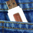 USB flash memory jump drive in a jeans pocket concepts of data mobility — Foto de Stock