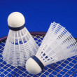 Badminton shuttlecock and racket concepts of sports — Stock Photo