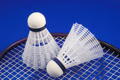Badminton shuttlecock and racket concepts of sports — Stok fotoğraf