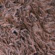 Royalty-Free Stock Photo: Brown woollen