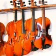 Four violins 2 — Stock Photo