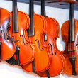 Violin shop - Stock Photo