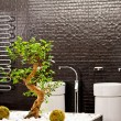 Bonsai bathroom - Stock Photo