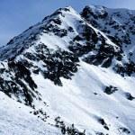 bergen topp — Stockfoto