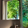 Nature bathroom — Stock Photo #3037241