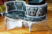 çift yan sofa — Stok fotoğraf