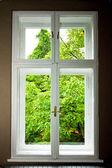 Windowwindow — Stock fotografie