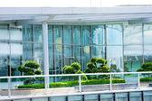Windows and garden — Stock Photo