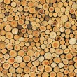 Wood wall 2 — Stock Photo
