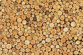 Wood wall 2 — Stock Photo