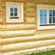 Cottage — Stock Photo #3164294