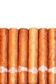 Cigars isolated — Stock Photo