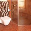 Zebra toilet -  