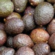 Avocado brown — Stock Photo
