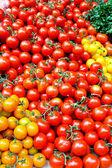 Cherry tomato vertical — Stock Photo
