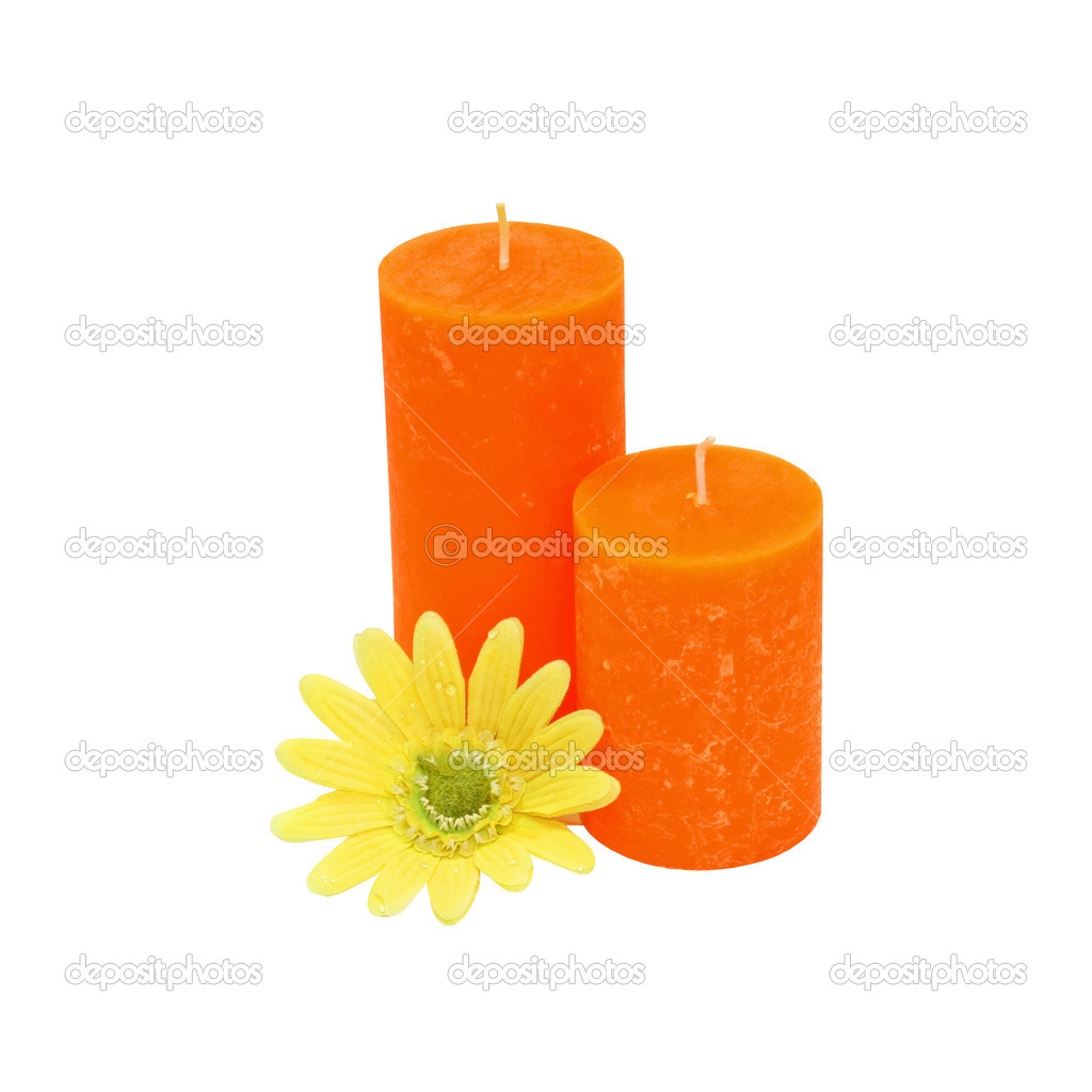 Two orange candles and yellow flower isolated  Photo #3199832