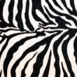 Zebra hide — Stock Photo