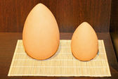 Egg shape — Stock Photo