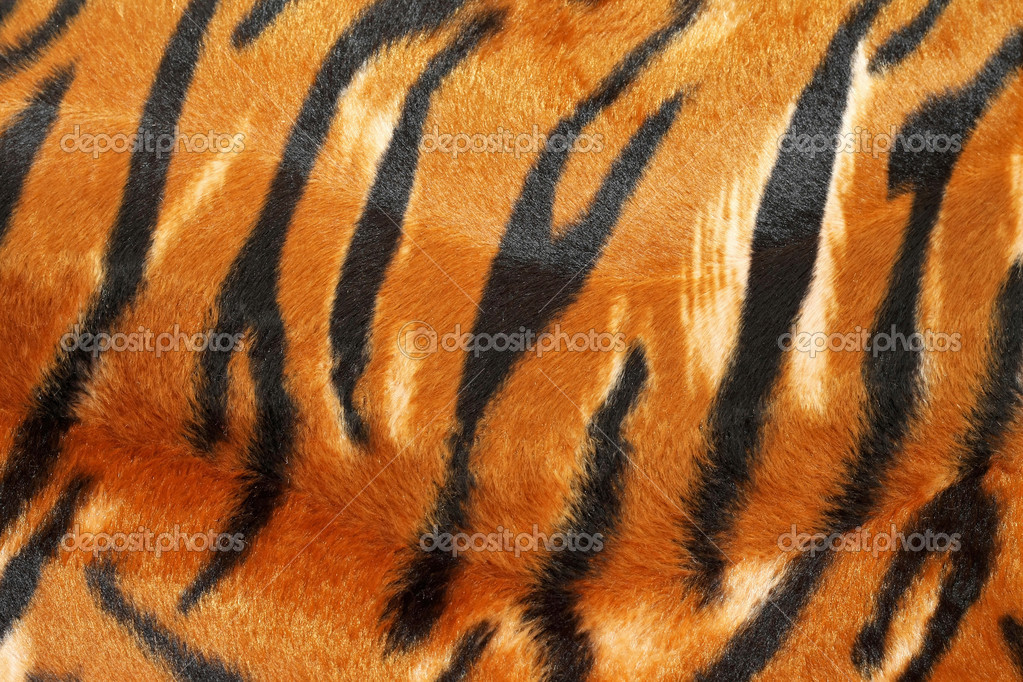 Wild African animal hide pattern tiger straps — Stock Photo #3205402