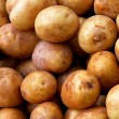Stock Photo: Small potatoes
