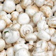 Stock Photo: White mushrooms
