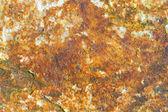 Beschimmelde steen — Stockfoto