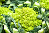 Abstract shape of green natural Romanesque vegetables — Stock Photo