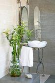 Banheiro de bambu — Foto Stock
