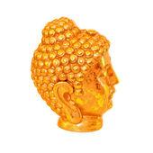 Golden head — Stock Photo