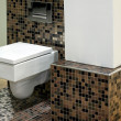 Stock Photo: Toilet and tiles