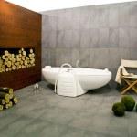 Winter bathroom — Stock Photo #3292855