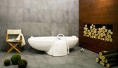 Badezimmer mit log — Stockfoto