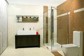 Klassiker dusch — Stockfoto