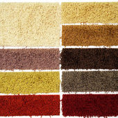 Carpet sampler — Foto Stock