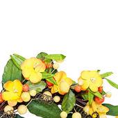 Yellow wreath detail — Stock Photo