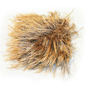 Carpet shaggy — Stock Photo