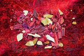 Purple leafs — Stock Photo
