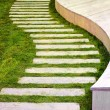 Garden path — Stock Photo #3488499