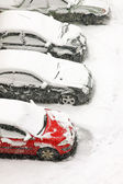 Snow blizzard — Stock Photo