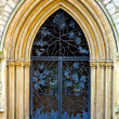 Ironwork door — Stock Photo
