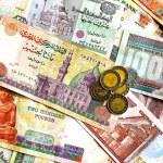 Egyptian pound — Stock Photo #3509872