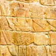 Egyptian wall — Stock Photo