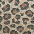 Leopard fabric — Stock Photo