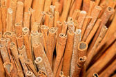 Cinnamon stick — Stock Photo