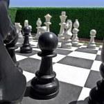 Chess in garden — Stock Photo #3633956
